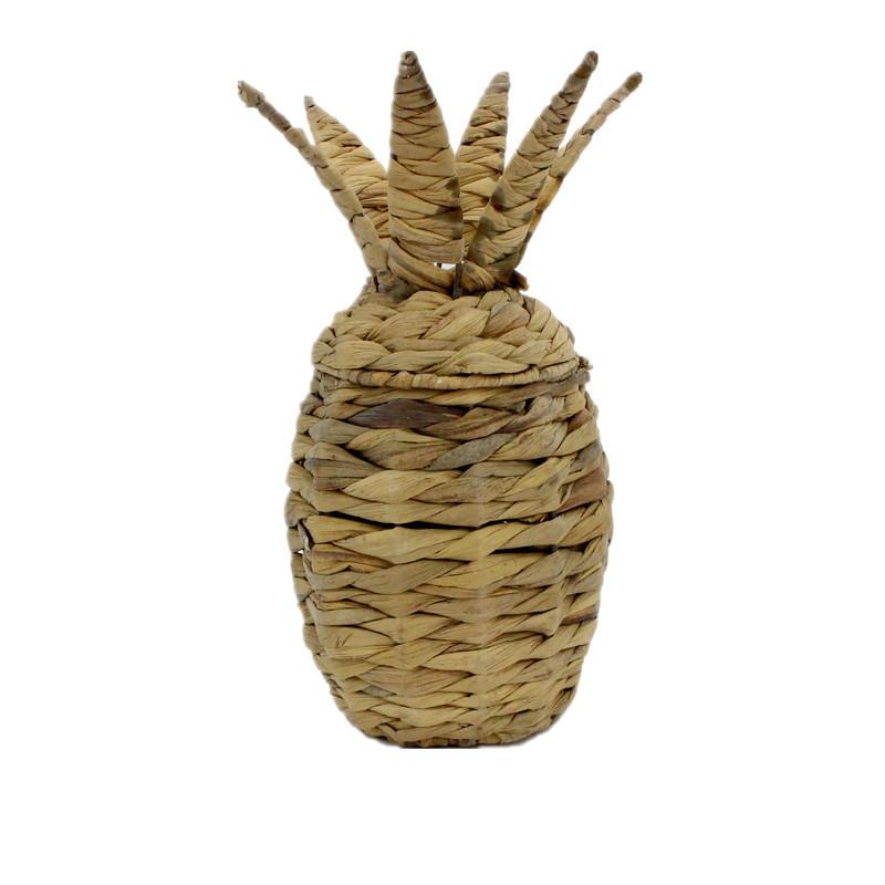 Pineapple Water Hyacinth Decoration